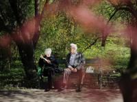 画像・65歳以上の15%が認知症 徘徊に疲弊する家族に社会はどう対応するのか