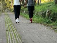 画.健康増進への行動変化て_好循環を 日本て_も健康増進型保険始まる