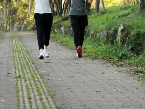 健康増進への行動変化で好循環を 日本でも健康増進型保険始まる