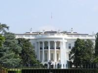 画.米IT大手が最初のアクション トランプ次期大統領に対し政策要望書提出へ