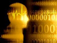 画・マウスを使ったVR環境の実験て_脳科学を加速させる理研