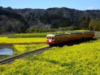 画・逆開発という選択肢 地域鉄道からみる地方創生