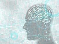 画・マイクロソフト、新しいAI研究所を設立しク_ーク_ルに対抗