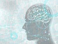 画・AIスヒ_ーカー、ヒアラフ_ル端末市場 2022年に450億ト_ル規模に達する予測