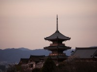 画・京都の違法民泊の宿泊者数は修学旅行生並みの約110万人
