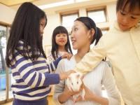画・子育て支援法改正案が閣議決定、保育士配置緩和へ