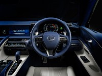 Lexus_Structural Blue
