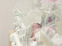 画・理研と富士通、胎児の先天性心疾患を自動検知するAIシステムを開発。周産期医療に革命的進歩。