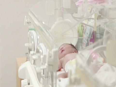理研と富士通、胎児の先天性心疾患を自動検知するAIシステムを開発。周産期医療に革命的進歩