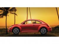 VW_Beetle Meister