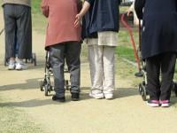 画・女性の高齢者人口、2000万人を突破。高齢就業率は主要国で最高。