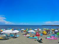 画・今年の「お盆・夏休み」は9連休。「海外旅行」と「自宅でゆっくり」が多数。