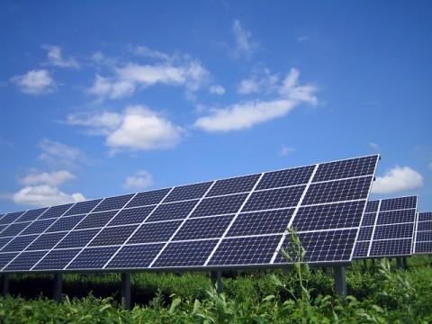 太陽光関連の倒産、ピーク越し減少傾向