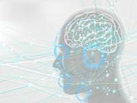 画・イメージトレーニングの脳科学。海馬は戦略に優先順位を付ける。~東大が解明。